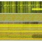 fishman-dividose-m-p-n-e-62-x-84-2011-3-panels_web