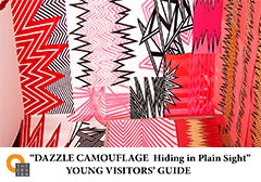 Dazzle Camoflauge: Hiding in Plain Sight Guide